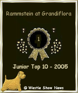 Westie Junior Top 10 - 2005 - RAMMSTEIN AT Grandiflora